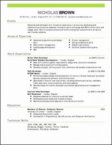 Pilot Resume Template - Airline Pilot Resume Examples Paragraphrewriter