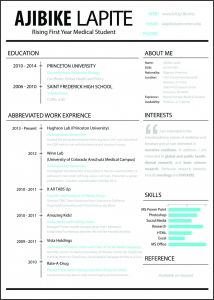 Princeton Resume Template - Resume Templates Latex Template Resume A Manual for Writers