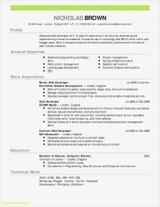 Private Equity Resume Template - Resume for Bank Operations Manager who is Able to Improve their Job