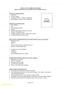 Professional Accountant Resume Template - 49 Awesome Best Resume Examples