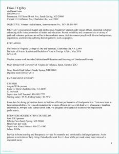 Professional Acting Resume Template - Acting Cover Letter Sample Cfo Resume Template Inspirational Actor