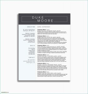 Program Manager Resume Template - Siebel Administration Sample Resume Program Manager Resume Sample
