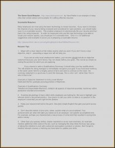 Project Manager Resume Template Microsoft Word - 17 Senior Project Manager Resume