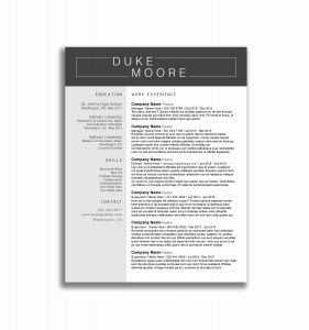 Property Manager Resume Template - Property Manager Resume Sample