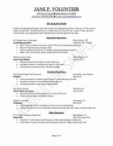 Restaurant Manager Resume Template - Restaurant Manager Resume Examples Awesome Elegant Grapher Resume
