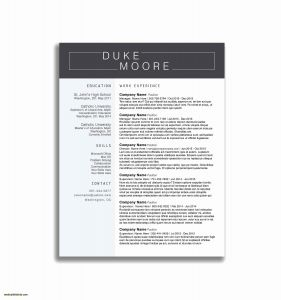 Restaurant Manager Resume Template - Program Manager Resume Sample Best Program Manager Resume Sample
