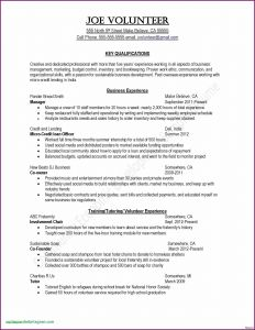 Resume Powerpoint Template - Artist Resume Template Awesome Resume Puter Skills Examples Fresh Od