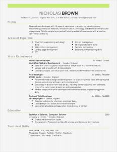 Resume Template Bartender - Sample Bartender Resume Best What is Resume Fresh Bsw Resume 0d