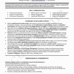 Resume Template Career Change - Beautiful Career Change Resume Examples