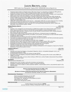 Resume Template Chronological - Unique Chronological Resume Examples Cv Resume