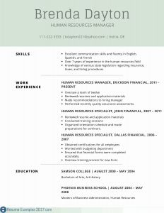 Resume Template Chronological - Chronological Resume Samples Elegant Resume Templates Copy and Paste