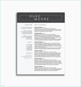 Resume Template Finance - Finance Resume Template Finance Resume Template Fresh Finance Resume