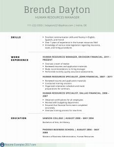 Resume Template Finance - Careers In Finance Resume Fresh Ceo Resume Sample Best Ceo Resume
