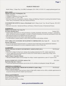 Resume Template Finance - Sample Resume for Finance Save New New Resume Sample Best Resume