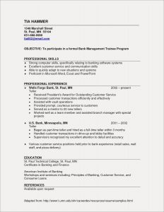 Resume Template for Bank Jobs - Resume Templates for Customer Service Best Customer Service Resume