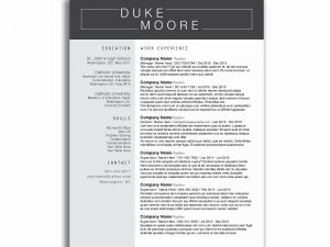 Resume Template for Construction Worker - Driver Resume Elegant Resume Templates for Truck Drivers Fresh