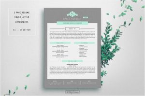 Resume Template for Mac Pages - Seven Simple but