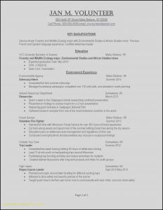 Resume Template for Part Time Job - Resume Examples for It Jobs Example Job Resume Awesome Examples