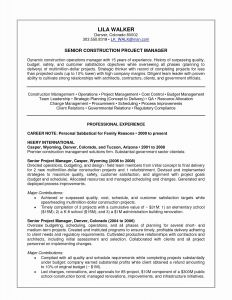 Resume Template for Senior Management - Senior Manager Resume Awesome Senior Management Resume Templates