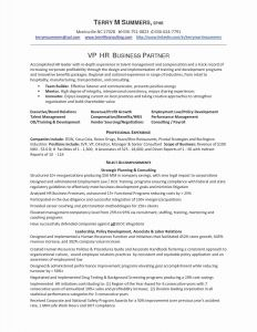 Resume Template for Senior Management - the 30 Awesome Resume format for Senior Management