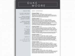 Resume Template for Supervisor Position - Google Drive Resume Fresh Google Drive Resume Lovely Resume Template