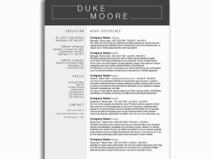 Resume Template for Truck Driver - Resume for Truck Driver Best Resume format for Driver Inspirational