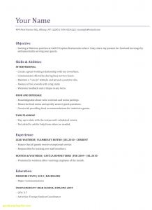 Resume Template for Waitress - Waitress Resume Examples Luxury Bartender Resume Refrence Resume for