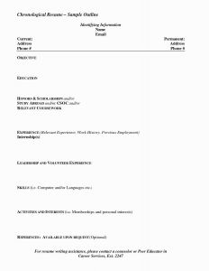 Resume Template for Writers - Resume format Examples Awesome Cfo Resume Examples Resume Writing