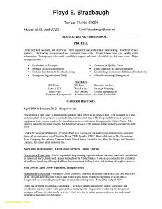 Resume Template Healthcare - Healthcare Resume Examples Awesome Resume Examples 0d Skills Resume