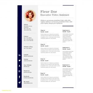 Resume Template Pages Mac - Microsoft Fice Resume Templates for Mac Best Resume Template for