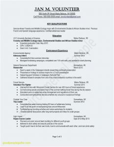 Resume Template with Volunteer Experience - 50 Option It Resume Examples 2016 Concept Kumnitcreative