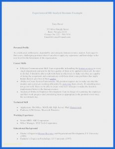 Retail Management Resume Template - 30 Retail Management Skills for Resume