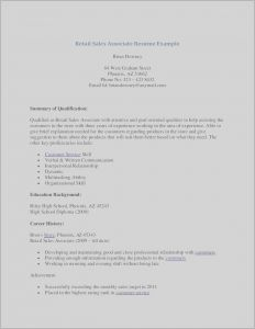 Retail Sales associate Resume Template - Sales associate Resume Examples Lovely Sample Resume Retail Sales