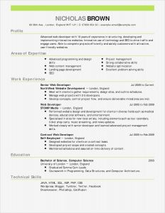 Rpi Resume Template - Actor Cover Letter Best Letter 19 Best Cfo Resume Template