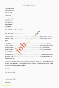 Sailing Resume Template - 21 Best organization Templates