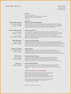 Sales Executive Resume Template - 30 Sales Executive Resume Examples