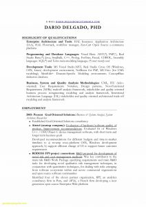 Secretary Resume Template - Executive Secretary Resume Lovely Resume Template Executive