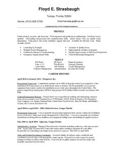 Secretary Resume Template - Customer Service Resume Examples List Resume Samples for Customer