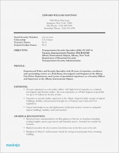 Security Officer Resume Template - Security Ficer Resume Sample 30 Resumes for Security Ficers