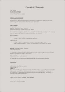 Should I Use A Resume Template - Swhat Should Be In A Resume Example Perfect Resume Fresh Examples