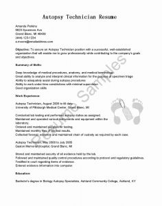 Skills Usa Resume Template - Sample Resume for Applying Ms In Us Best Good Looking Resume