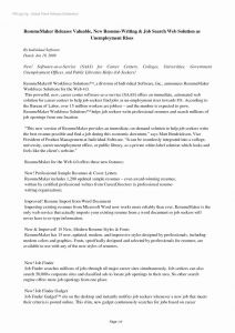 Software Developer Resume Template Word - 25 Best software Developer Resume Template