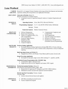 Software Developer Resume Template Word - Entry Level Web Developer Resume Examples 2018 software Developer