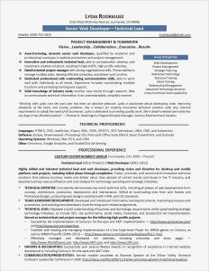 Software Engineer Resume Template Microsoft Word - Inspirational Words with Letters Window