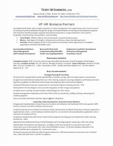 Software Engineer Resume Template Word - Resume format for Experienced software Developer Doc New software
