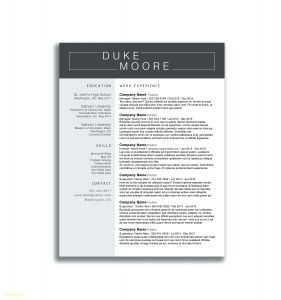Stage Manager Resume Template - Artist Resume Sample Makeup Templates 7 Beginner Resumes Free