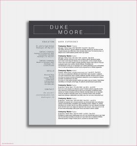 Stanford Resume Template - Free Dynamic Resume Templates 25 New Free Nursing Resume Templates