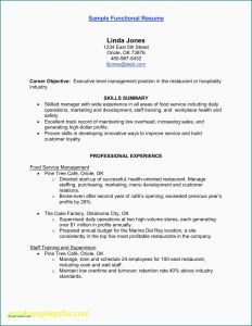 Startup Resume Template - Procurement Resume Purchasing Technician Resume Technicians Resume