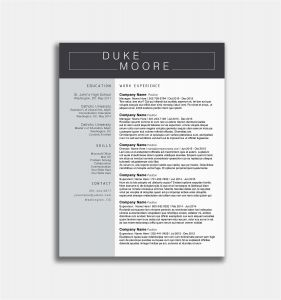 Stay at Home Mom Resume Template - Fresh Stay at Home Mom Job Description for Resume Cv Resume