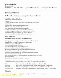 Swiss Resume Template - 15 Awesome Bartender Resume Sample